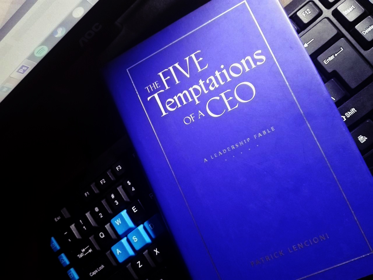 5temptations of a CEO